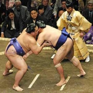 Японское сумо