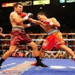 Бокс по профессиональным правилам