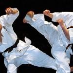 соревнований по карате