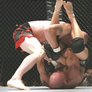 MMA - Микс Файт