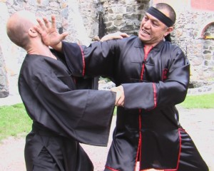Тактика в боевых искусствах и единоборствах