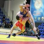 турнира Турнир международного масштаба по классической борьбе имени Ивана Поддубного