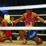 Чемпионат по тайскому боксу