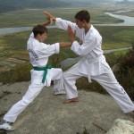 Мастер-класс по боевым искусствам от Владимира Дроздова