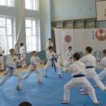 Чемпионат и Первенство по каратэ-до шотокан