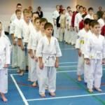 Соревнования по каратэ в память Владимира Чепракова