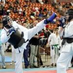 Олимпиада боевых искусств по различным видам единоборств