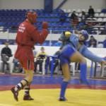 Открытое первенство и чемпионат Белгородской области по боевому самбо