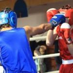 Всероссийский турнир по боксу в Мордовии