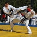 Каратисты из Перми завоевали десять наград на чемпионате мира