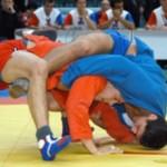 На турнире международного масштаба по самбо в Иркутске золотыми призерами стали 10 спортсменов из области принимающей соревнования