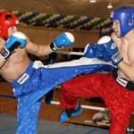 В Анапе берет старт мировой Кубок по кикбоксингу
